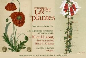 stage de dessin botanique